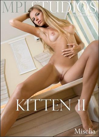 Mischa - Kitten 2